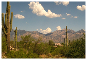 Case Study: Oro Valley Water Utility, AZ